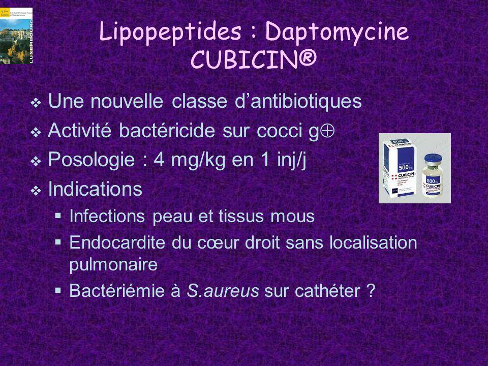 Lipopeptides : Daptomycine CUBICIN®