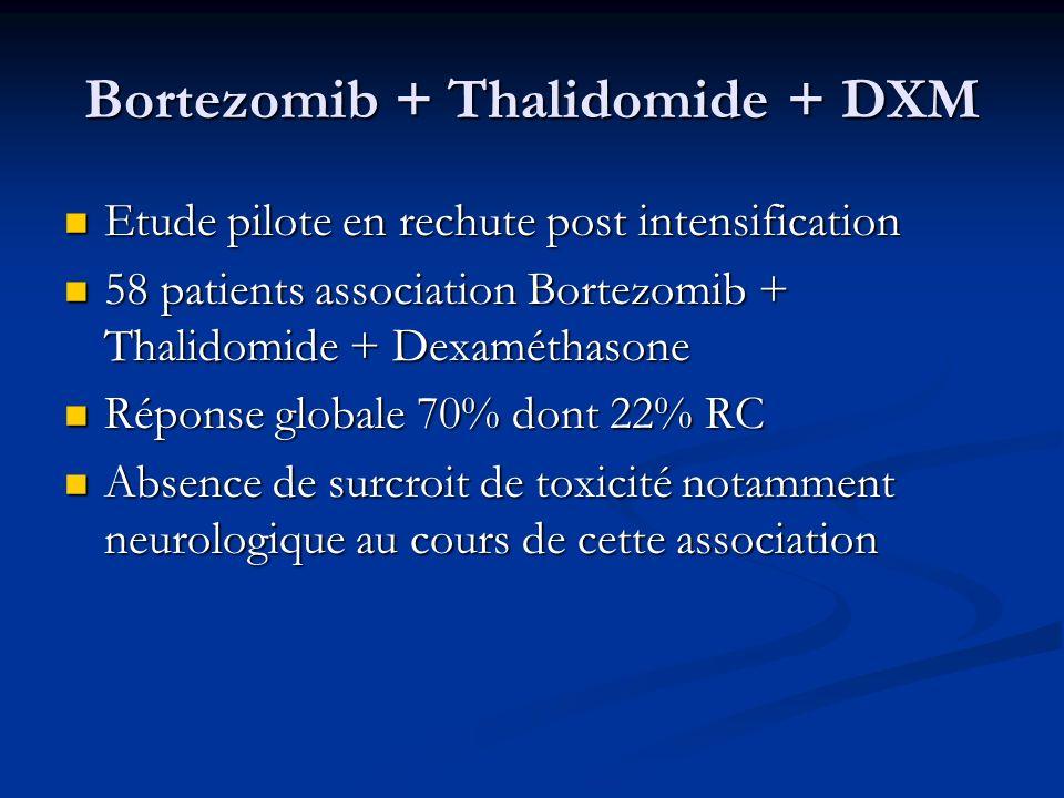 Bortezomib + Thalidomide + DXM