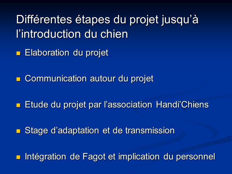 Différentes étapes du projet jusqu'à l'introduction du chien