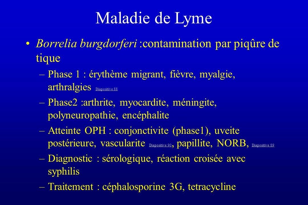 Maladie de Lyme Borrelia burgdorferi :contamination par piqûre de tique. Phase 1 : érythème migrant, fièvre, myalgie, arthralgies Diapositive 88.