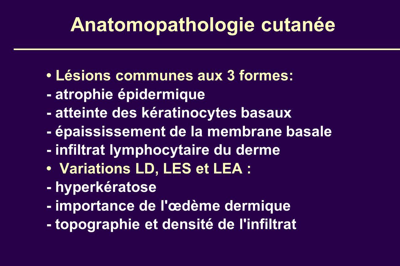 Anatomopathologie cutanée