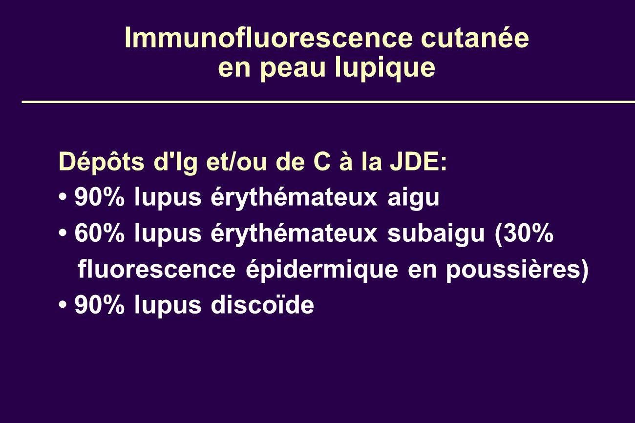 Immunofluorescence cutanée en peau lupique
