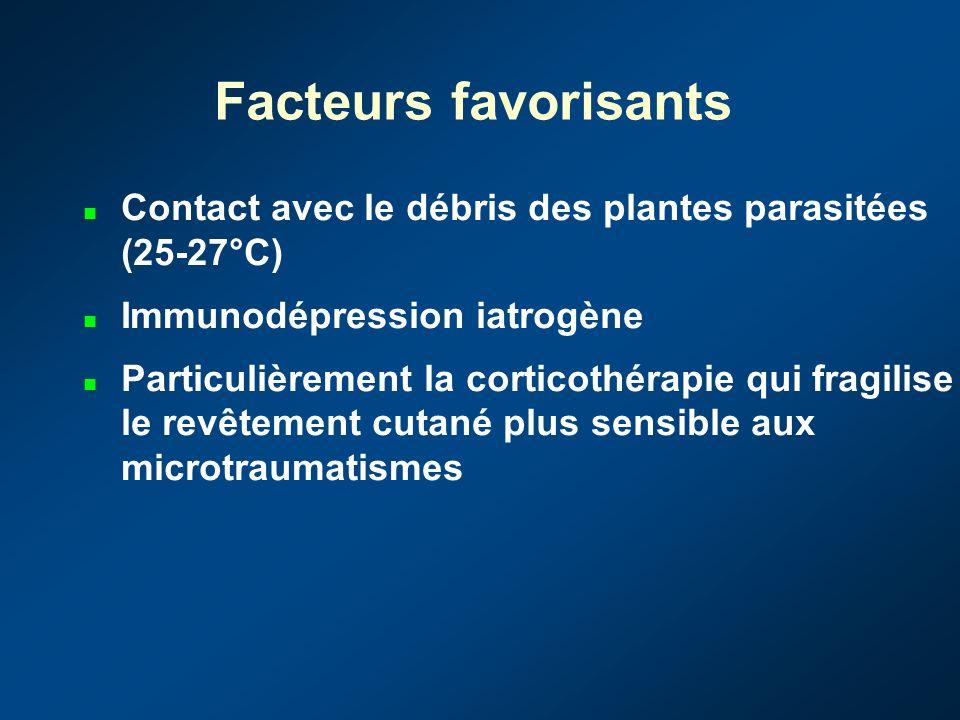Facteurs favorisants Contact avec le débris des plantes parasitées (25-27°C) Immunodépression iatrogène.