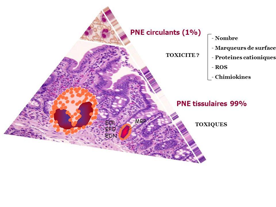 PNE circulants (1%) PNE tissulaires 99% Nombre Marqueurs de surface