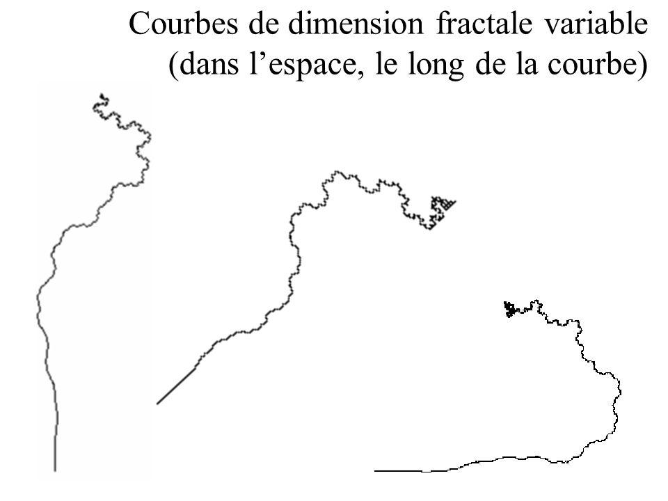 Courbes de dimension fractale variable (dans l'espace, le long de la courbe)