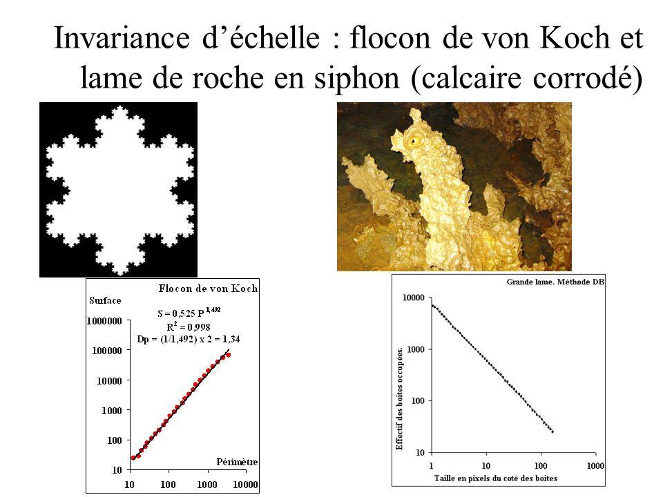 Invariance d'échelle : flocon de von Koch et lame de roche en siphon (calcaire corrodé)