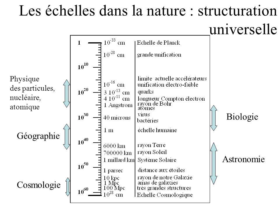 Les échelles dans la nature : structuration universelle