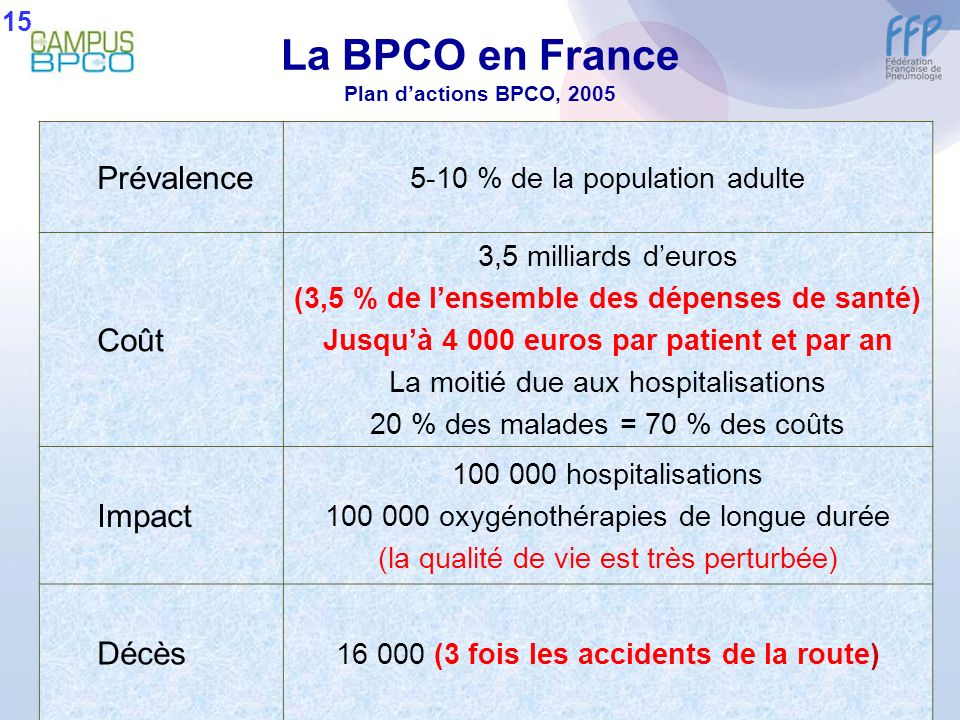 La BPCO en France Plan d'actions BPCO, 2005