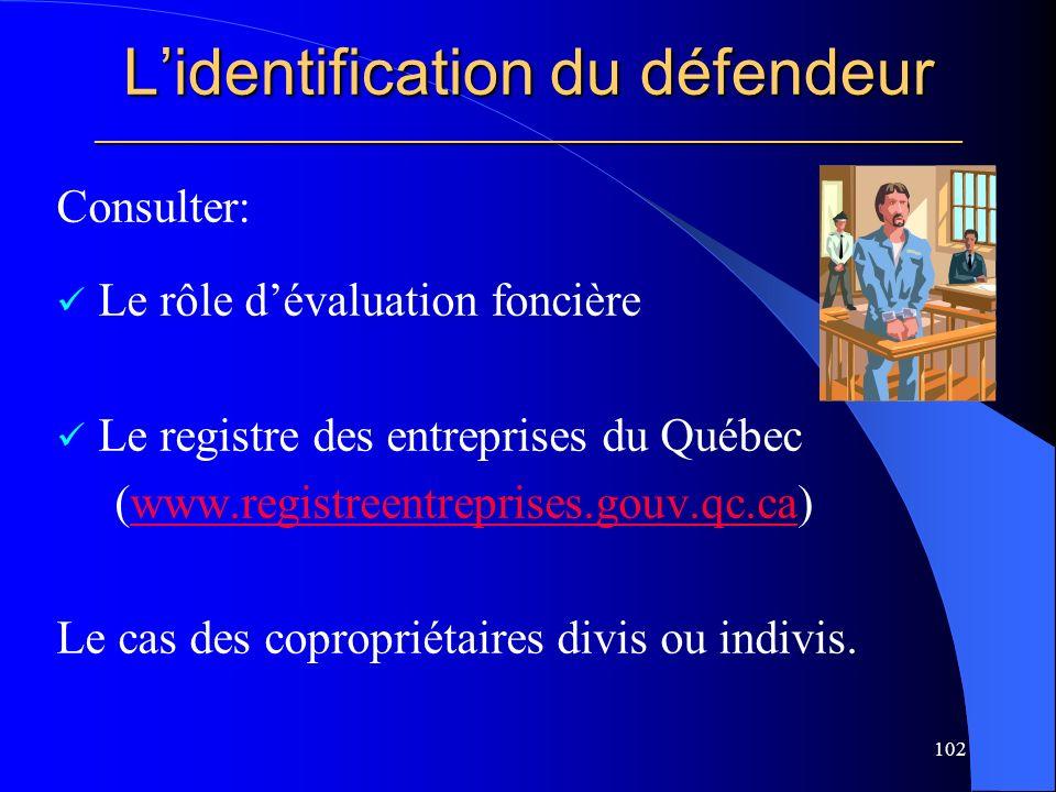 L'identification du défendeur _____________________________________________________