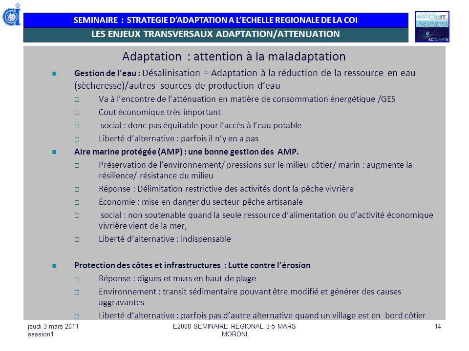 LES ENJEUX TRANSVERSAUX ADAPTATION/ATTENUATION