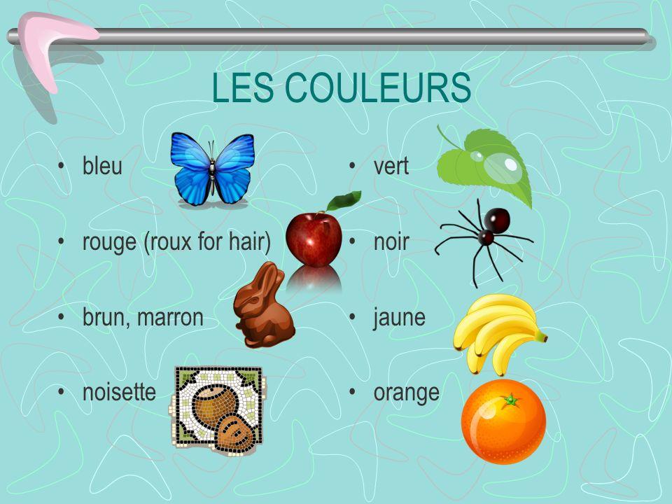 LES COULEURS bleu rouge (roux for hair) brun, marron noisette vert