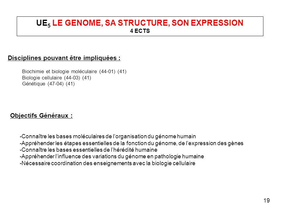 UE5 LE GENOME, SA STRUCTURE, SON EXPRESSION