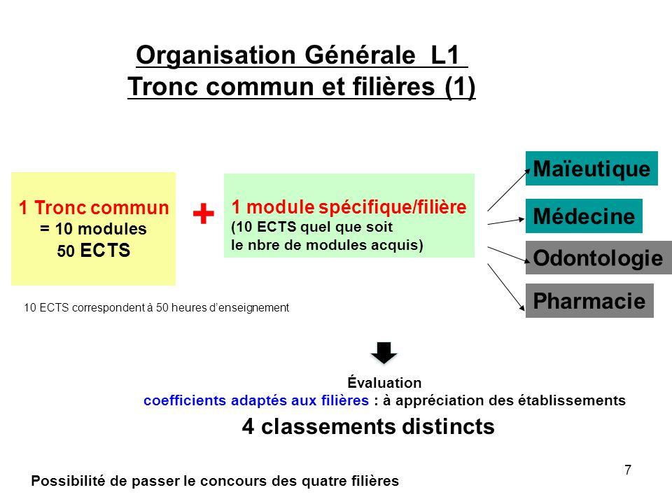 + Organisation Générale L1 Tronc commun et filières (1) Maïeutique
