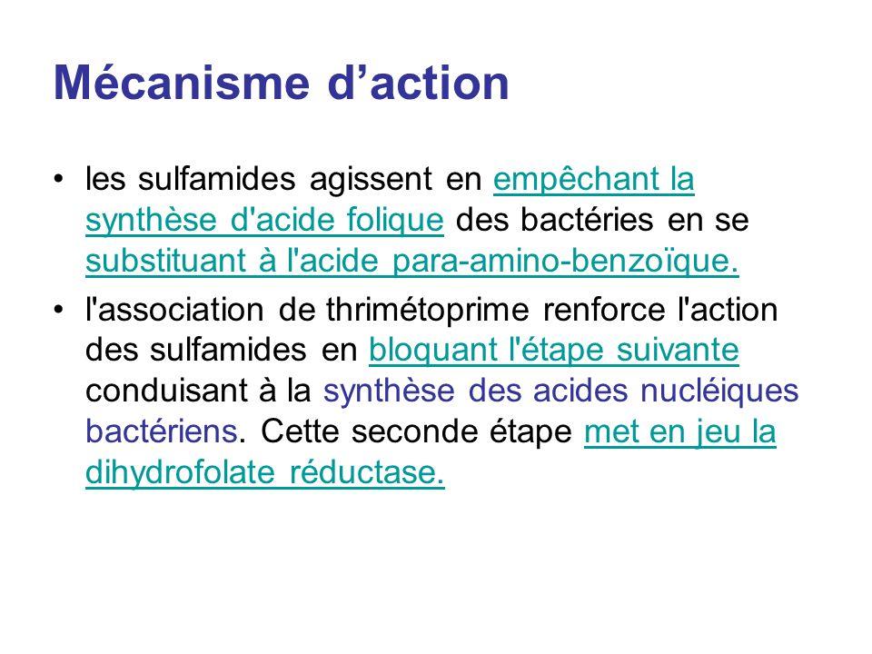 Mécanisme d'action les sulfamides agissent en empêchant la synthèse d acide folique des bactéries en se substituant à l acide para-amino-benzoïque.