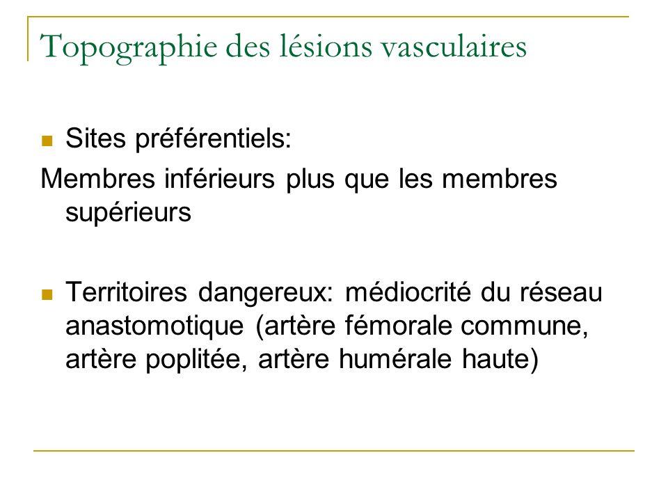 Topographie des lésions vasculaires