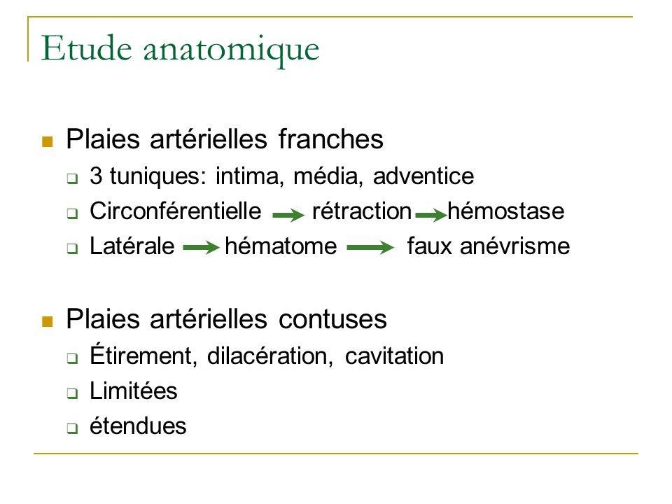 Etude anatomique Plaies artérielles franches