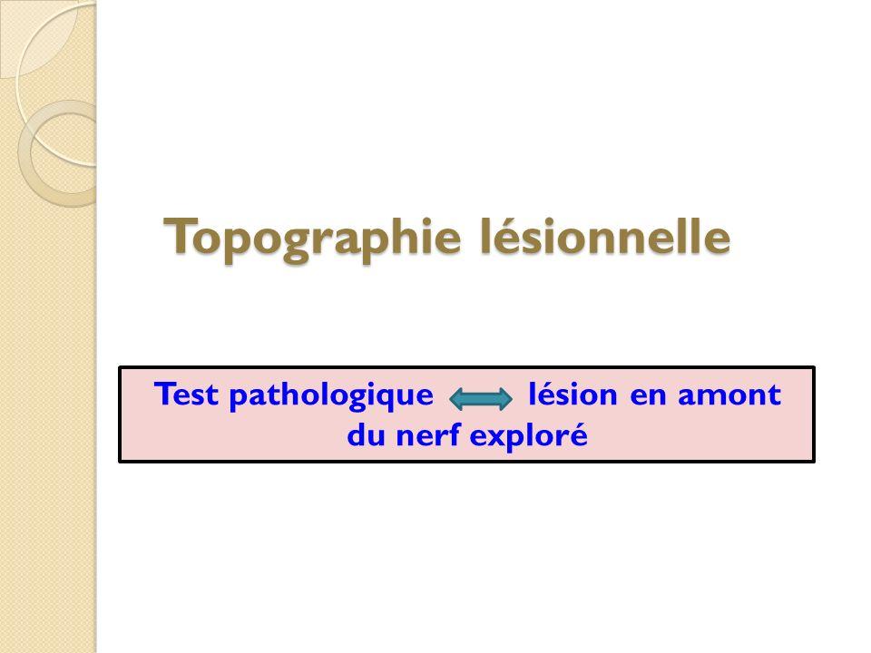Topographie lésionnelle