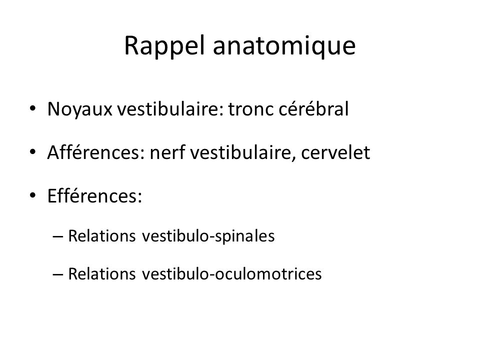 Rappel anatomique Noyaux vestibulaire: tronc cérébral