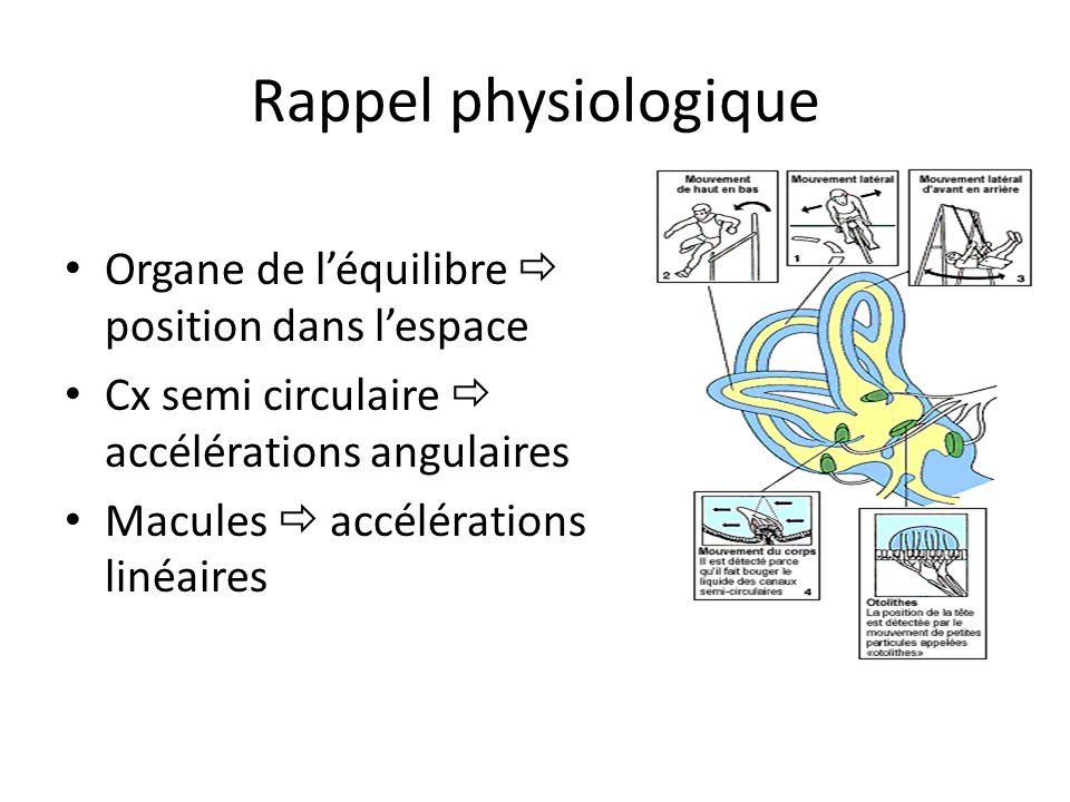 Rappel physiologique Organe de l'équilibre  position dans l'espace