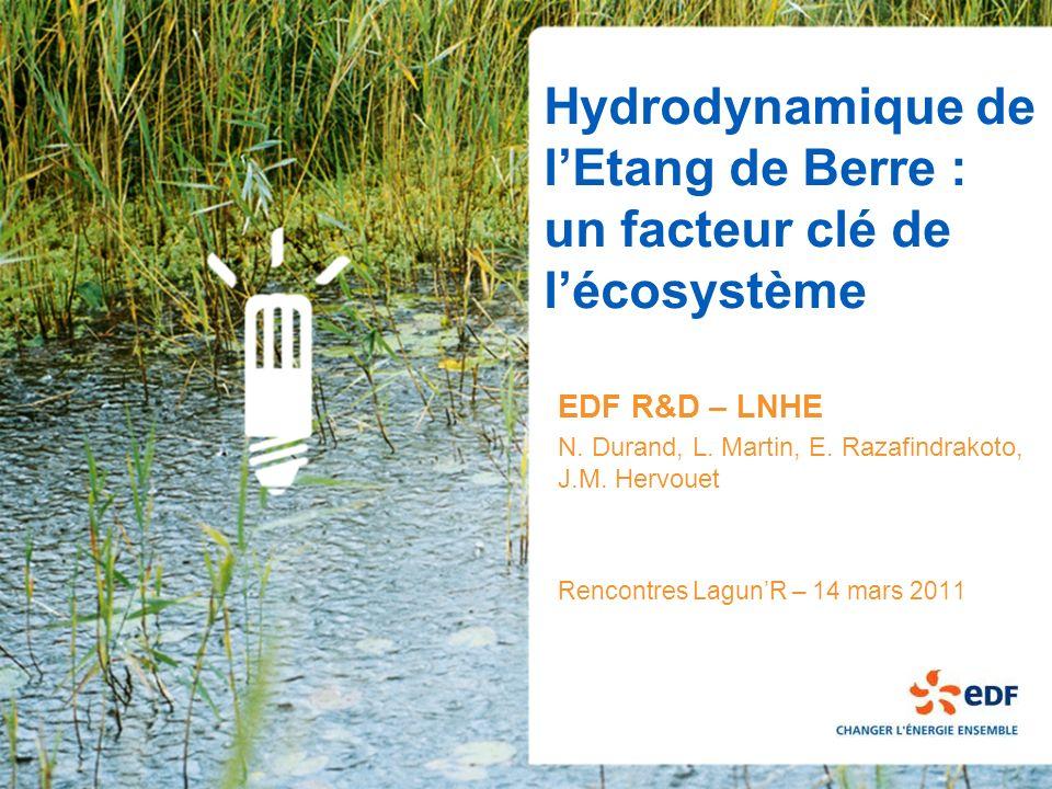Hydrodynamique de l'Etang de Berre : un facteur clé de l'écosystème