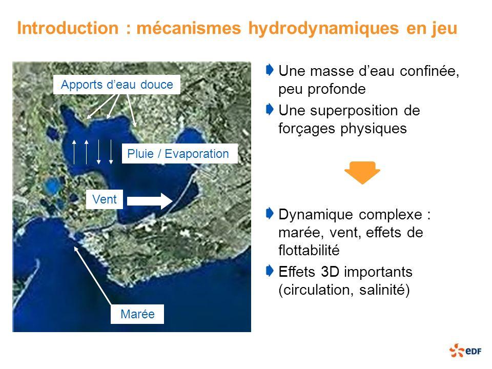 Introduction : mécanismes hydrodynamiques en jeu