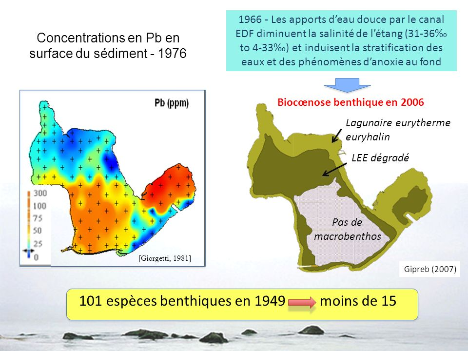Concentrations en Pb en surface du sédiment - 1976