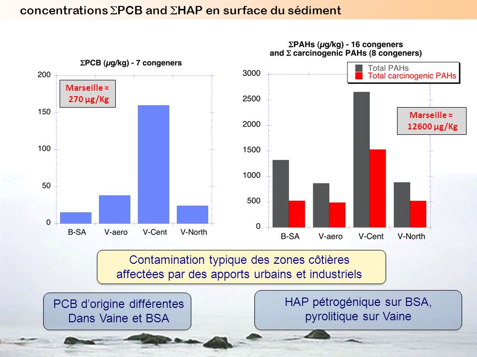 concentrations SPCB and SHAP en surface du sédiment