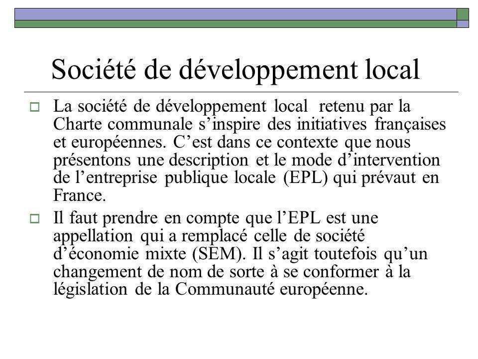 Société de développement local