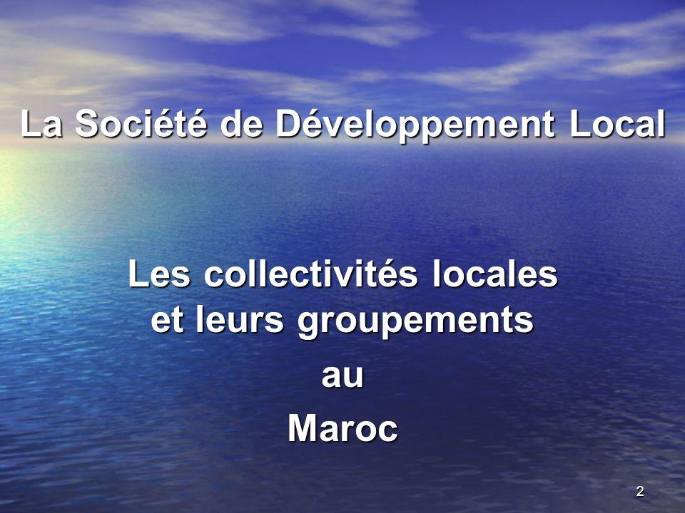 La Société de Développement Local