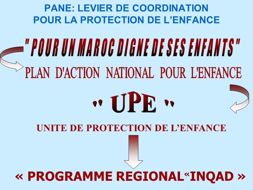 PANE: LEVIER DE COORDINATION POUR LA PROTECTION DE L'ENFANCE