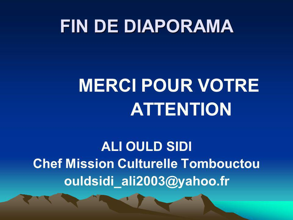 Chef Mission Culturelle Tombouctou