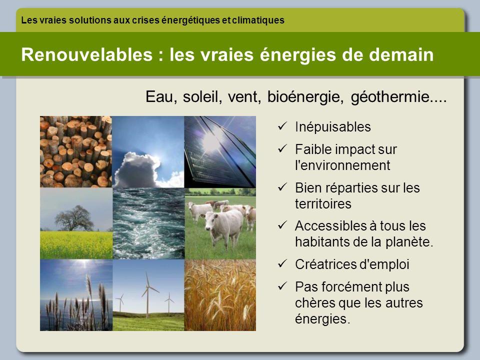 Renouvelables : les vraies énergies de demain