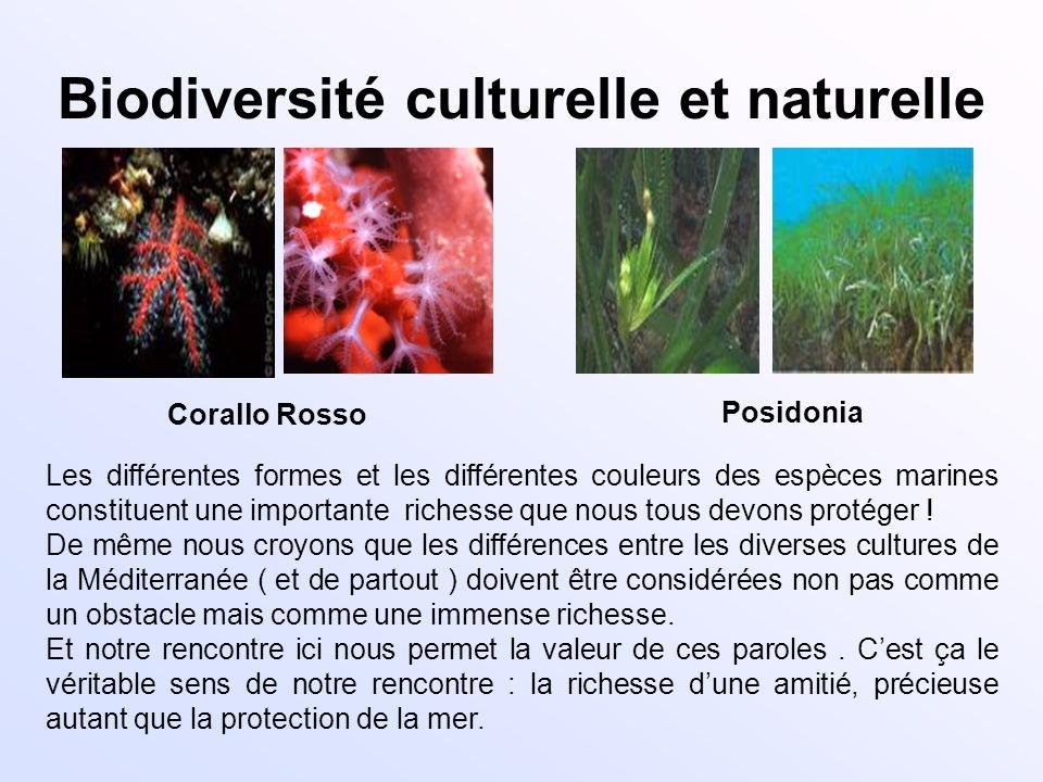 Biodiversité culturelle et naturelle