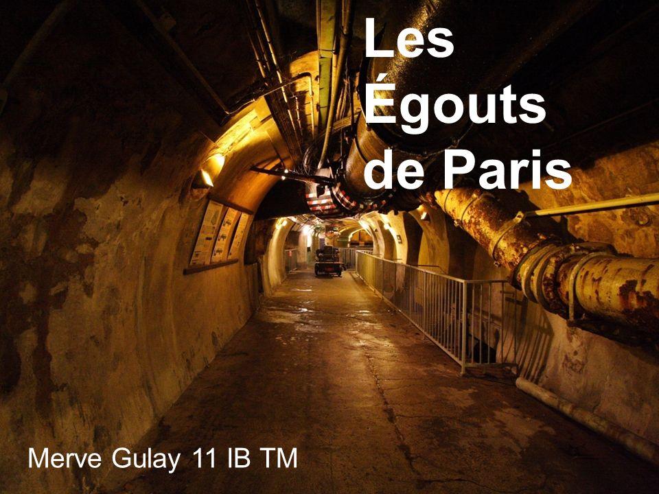 Les Égouts de Paris Merve Gulay 11 IB TM