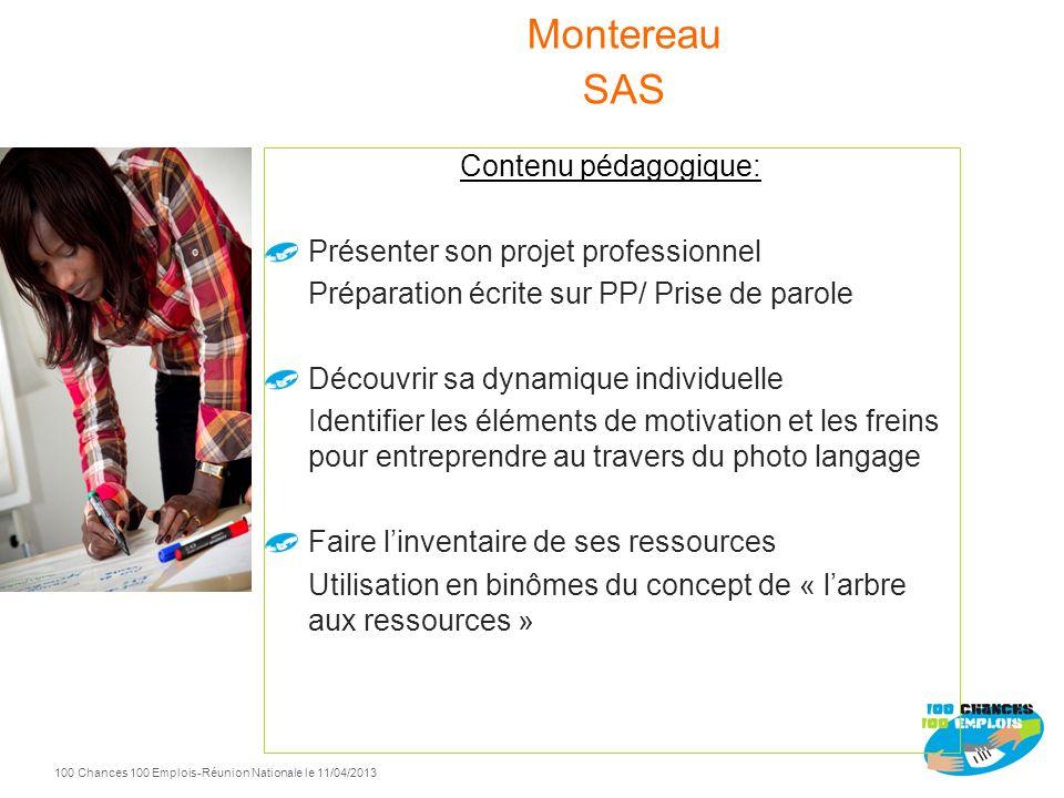 Montereau SAS Contenu pédagogique: Présenter son projet professionnel