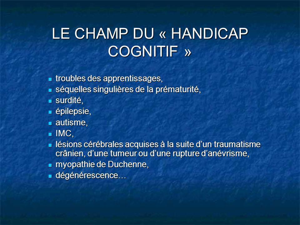 LE CHAMP DU « HANDICAP COGNITIF »