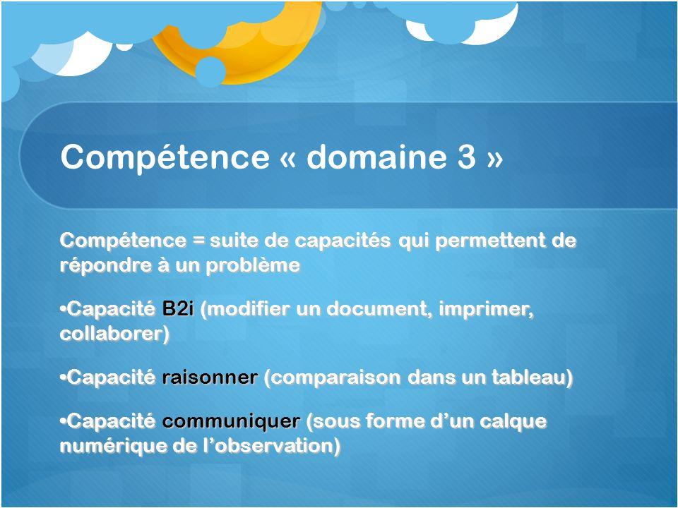 Compétence « domaine 3 » Compétence = suite de capacités qui permettent de répondre à un problème.