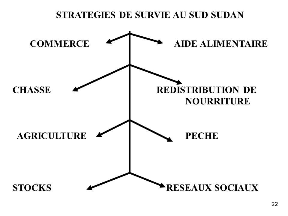 STRATEGIES DE SURVIE AU SUD SUDAN COMMERCE AIDE ALIMENTAIRE