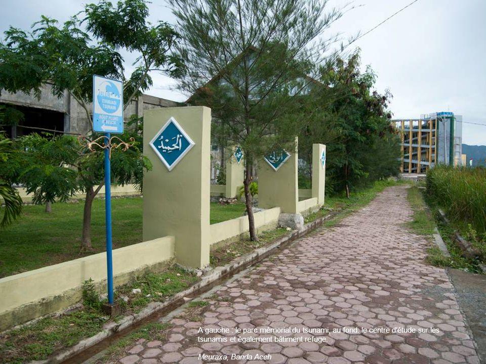 A gauche : le parc mémorial du tsunami, au fond: le centre d'étude sur les tsunamis et également bâtiment refuge.