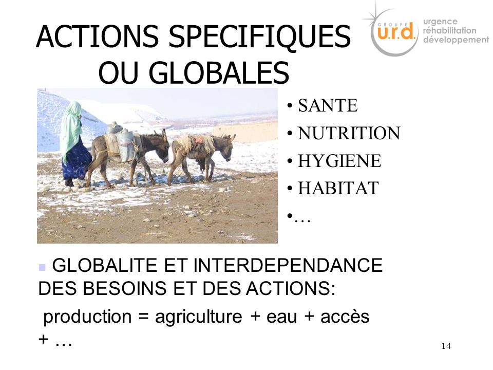 ACTIONS SPECIFIQUES OU GLOBALES