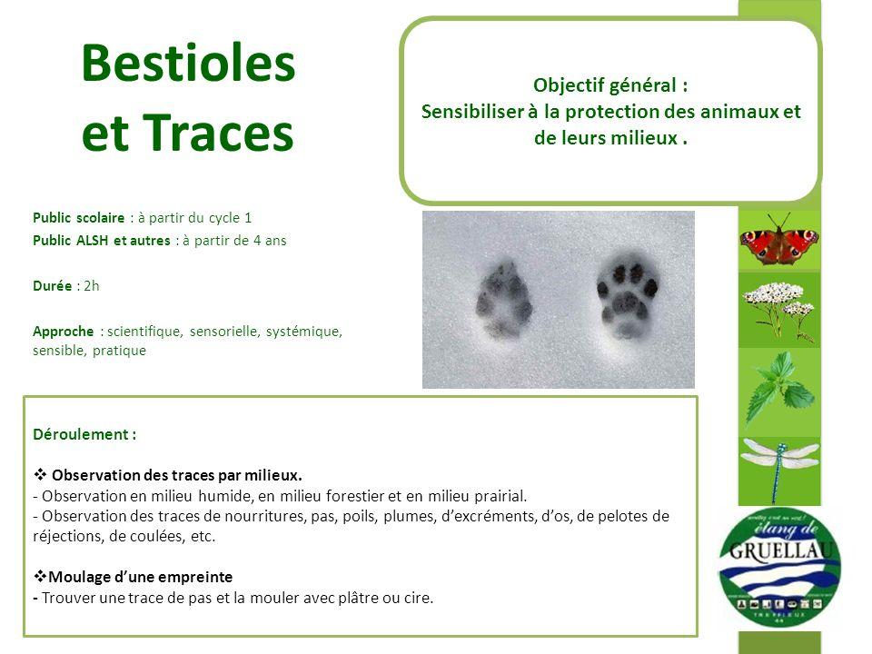 Sensibiliser à la protection des animaux et de leurs milieux .