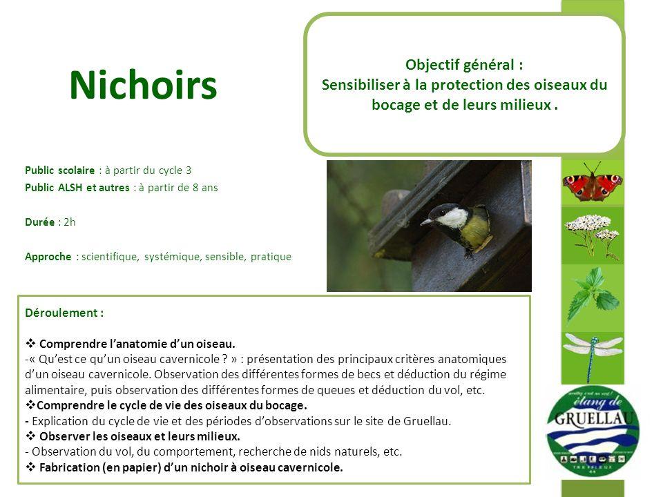 Nichoirs Objectif général :