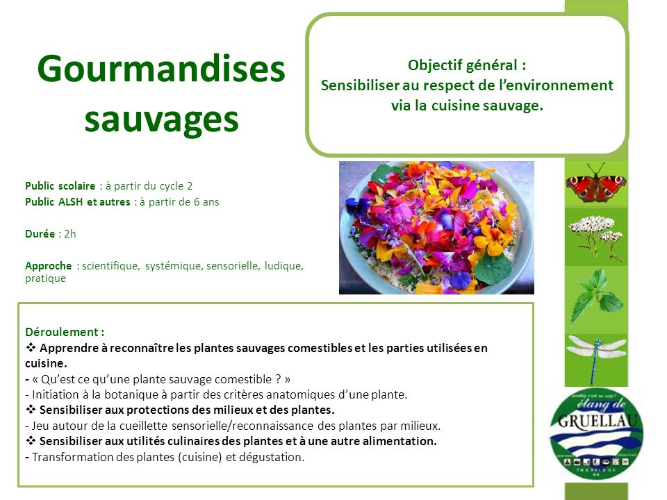 Gourmandises sauvages