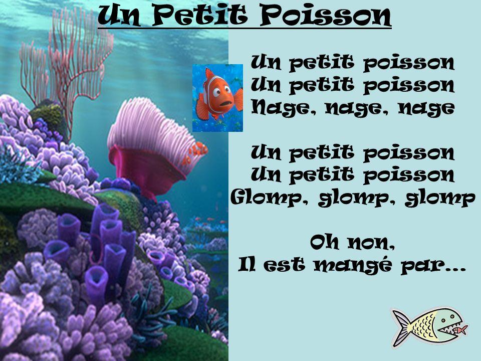 Un Petit Poisson Un petit poisson Nage, nage, nage Glomp, glomp, glomp