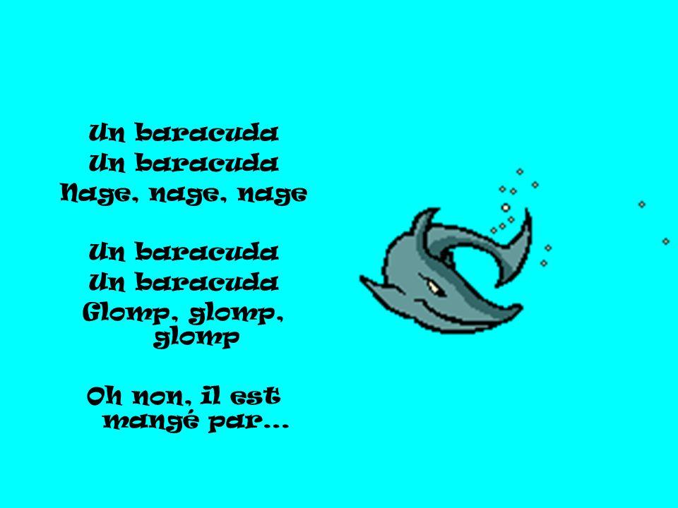 Un baracuda Nage, nage, nage Glomp, glomp, glomp Oh non, il est mangé par…