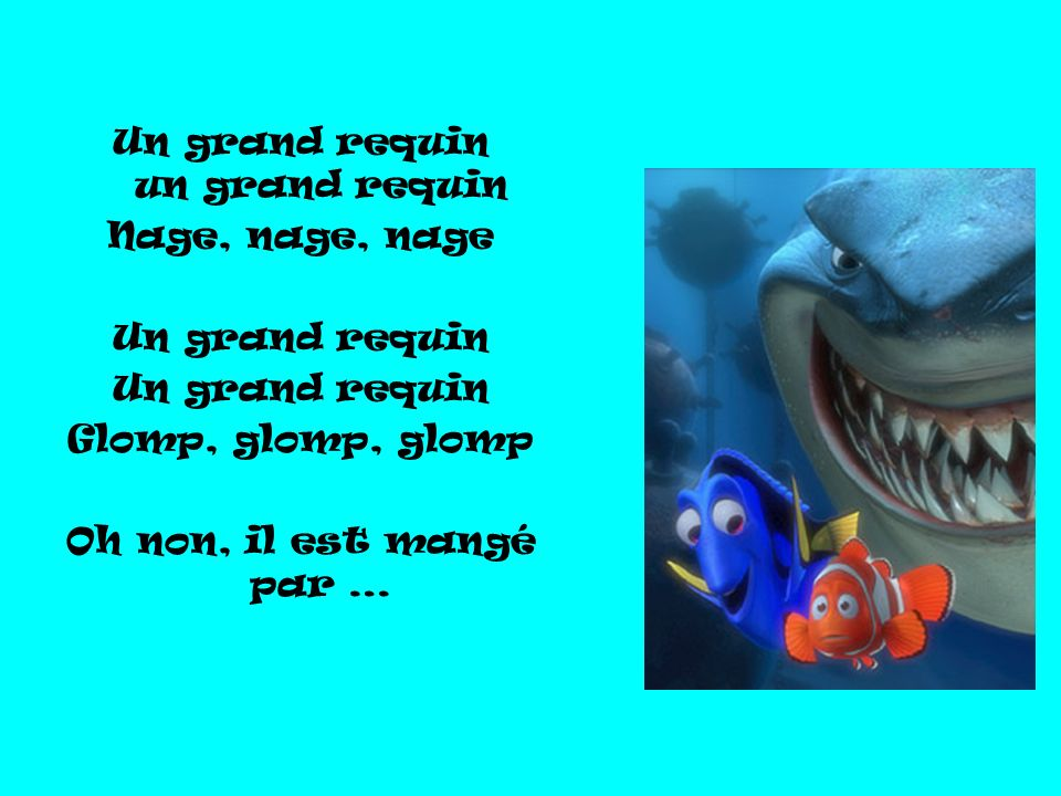 Un grand requin un grand requin