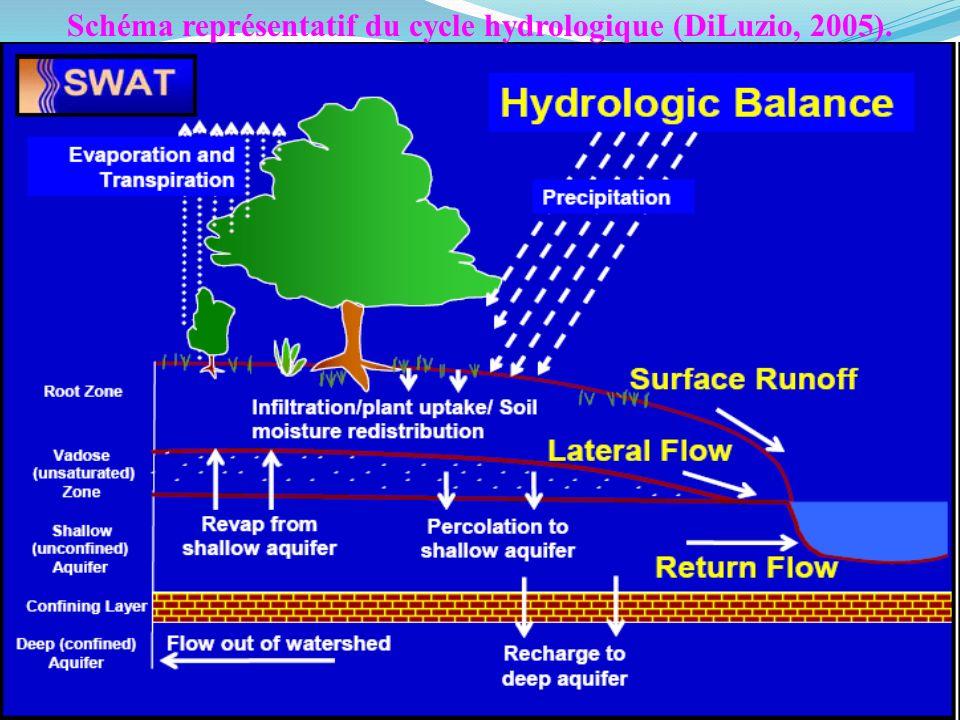 Schéma représentatif du cycle hydrologique (DiLuzio, 2005).