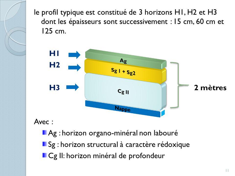 le profil typique est constitué de 3 horizons H1, H2 et H3 dont les épaisseurs sont successivement : 15 cm, 60 cm et 125 cm.