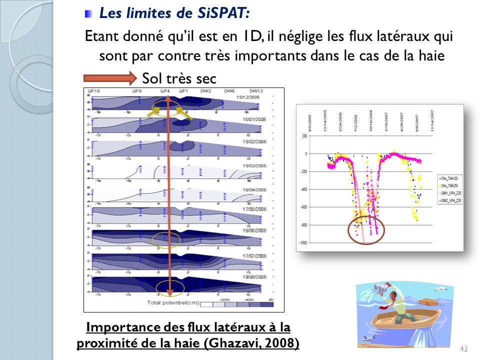 Importance des flux latéraux à la proximité de la haie (Ghazavi, 2008)