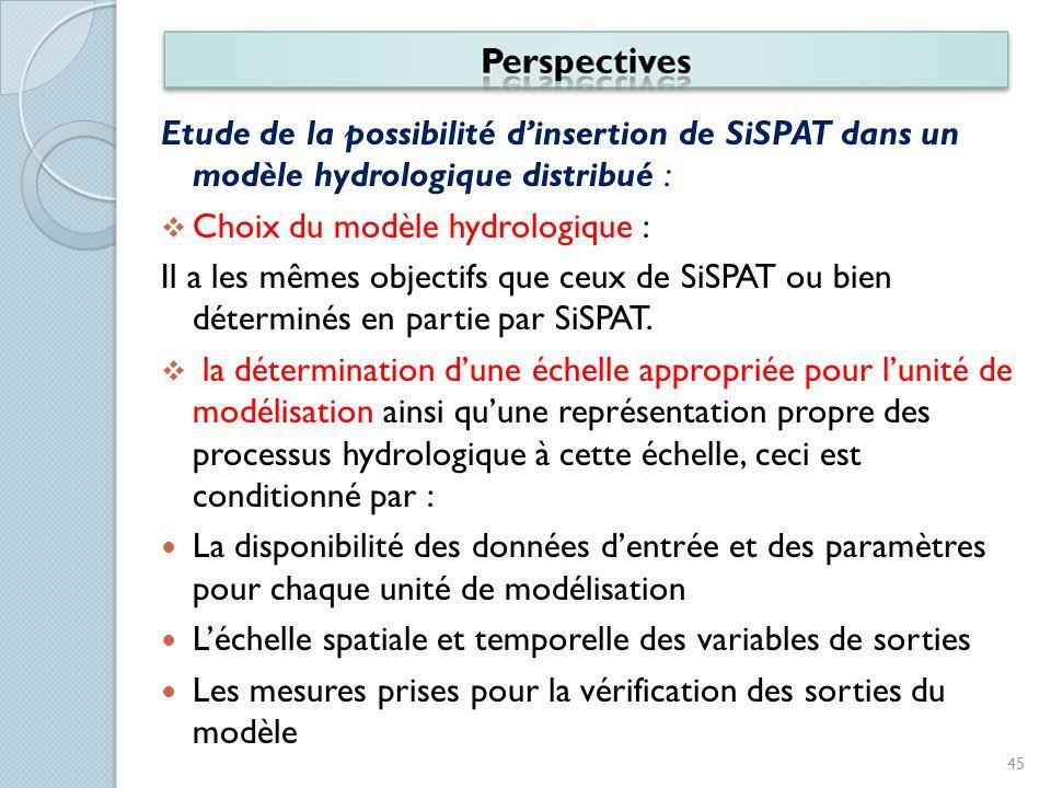 Etude de la possibilité d'insertion de SiSPAT dans un modèle hydrologique distribué :